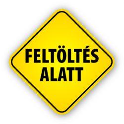 CTX-DS10G/B-G  12V MR16 beépíthető spot halogén keret Kanlux
